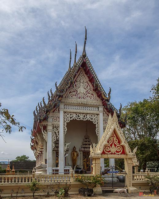 Wat ThepNimit Phuket Photos Gallery,Wat ThepNimit Phuket,wat thep nimit phuket,best temple in phuket, biggest temple in phuket, buddhist temple in phuket, buddhist temple in phuket thailand, chalong temple in phuket, chinese temple in phuket, chinese temple in phuket town, elephant temple in phuket, famous temple in phuket, hindu temple in phuket, hindu temple in phuket thailand, indian temple in phuket, iskcon temple in phuket, largest temple in phuket, monkey temple in phuket, monkey temple in thailand phuket, most famous temple in phuket, most important buddhist temple in phuket, most important temple in phuket, most popular temple in phuket, oldest temple in phuket, Panorama Keng Keng, Sam Kong Shrine, Sam Kong Temple Phuket Photos Gallery, shiva temple in phuket, sikh temple in phuket, Soi Firework Shrine, temple a phuket, temple bouddhiste phuket, temple chalong phuket, temple chinois phuket, temple in patong phuket, temple in phuket, temple in phuket thailand, temple karon phuket, temple kata phuket, temple market phuket, temple meditation phuket, temple monkeys phuket, temple near phuket, temple ruins in phuket, temple sur phuket, temple tattoo in phuket, temple to visit in phuket, temple tours in phuket, temple tours phuket, thai temple in phuket, tiger temple in phuket, wat chalong temple in phuket thailand, where is tiger temple in phuket